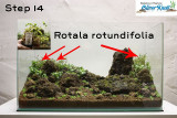 NatureSoil Step by Step Layout Nr.3 by Oliver Knott - Step 14