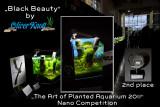 Black Beauty 20 Liter by Oliver Knott