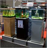 AquaFisch 2008