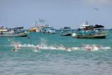 P1140827swimming.jpg