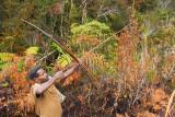 Landscape West Papua