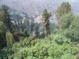 Bogota Cerro de Monserrate