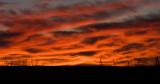 sunset 010100IMG_1263