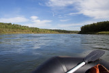 north saskatchewan river 090509_MG_9398