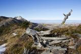 mountain scenery 100712_MG_9584