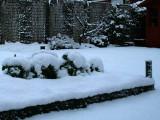 Garden transformed by snowfall, Glasgow