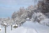 Coylumbridge to Blackpark minor road