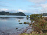 Ring Point and Inchcailloch, Loch Lomond