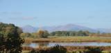 Wards Pond, Loch Lomond NNR