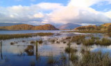 Balmaha Bay and Inchcailloch, Loch Lomond