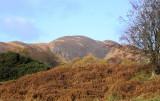 Conic Hill, Loch Lomond (*Contax*)
