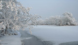 Endrick Water, Loch Lomond NNR
