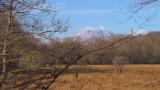 Ben Lomond from Gartfairn Wood, Loch Lomond