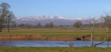 Endrick Water flood plain at Buchanan Castle Estate