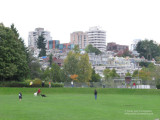 Charleson Park by False Creek