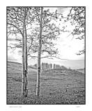 Aspen grove, UT