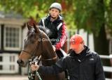 Klampenborg 2009-06-05 (Derby Trial Stakes)