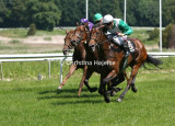 0323d.jpg (Fawzia Stakes)