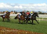 0342h.jpg (Memsie Stakes, G2 1400 m)