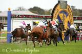 1515h.jpg (Underwood Stakes (G1))