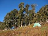 Campsite, Balangra