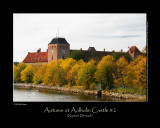 Autumn at Aalholm Castle #2