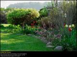 Backyard flowerbed