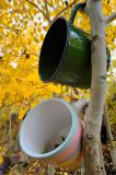 Morning Coffee :-)