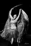 dance 6917