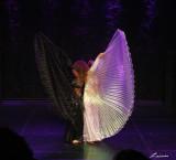 dance 4981