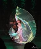 dance 5011