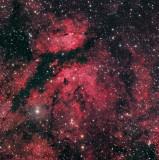 Butterfly Nebula (IC 1318)