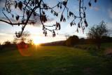 20090426 - Redmire Sunset
