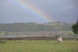 20120930 - Rainbow's End