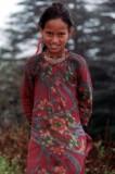 in Himachal Pradesh, Northern India