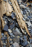 Shale Stones and Driftwood