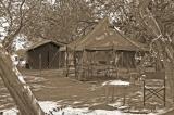 Camp Sepia Tone