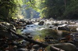 Autumn on the Raging River
