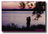 Birder  At Onondaga Lake During A Sunset
