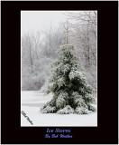 An Ice Storm's Cloak