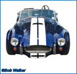The Legendary Shelby Cobra