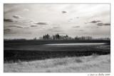 Farmland - Oswego, IL USA