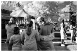 Bluegrass Fair 2009