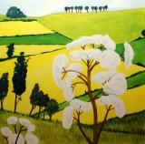 Kettlewood paintings