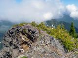 Mt. Baker/Snoqualmie N.F. - Illabot Peaks