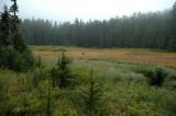 Beljica Meadows