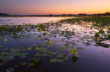 Dusk at Spring Lake