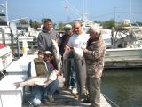fish42306-1.jpg
