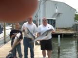fish2050104.jpg