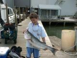 fish50505_1.jpg